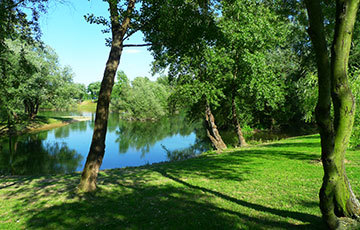 Bundek park Zagreb Small Lake Preserved Trees